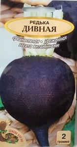 Редька ДИВНАЯ РС, 2 грамма. Среднеспелая, урожайная, богатая витаминами - фото 5456