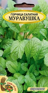 ГОРЧИЦА САЛАТНАЯ МУРАВУШКА РС1, 1.5 грамм. Скороспелая, острый горчичный вкус, холодостойкая, приятный аромат