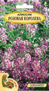 Алиссум РОЗОВАЯ КОРОЛЕВА 0,2 грамма. Однолетник, розовый, карликовый, 10-15 см.