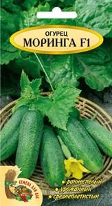 Огурец МОРИНГА F1, 0,5 грамм. Гибрид, раннеспелый, пчелоопыляемый